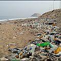 La mer poubelle !...