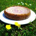 Cheesecake tourbillon chocolat blanc / framboises
