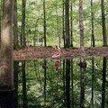 Le spectacle aveugle de la photographe suédoise susanna hesselberg