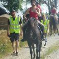 Jeux équestres manchots 2013 (87)