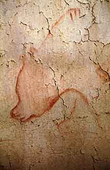 grotte Chauvet_i_ours rouge