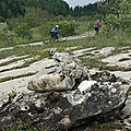 Autour du refuge pierre baudinard 1614 m _ le mas – st disdier-en-dévoluy 05250