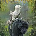 Le monde de Nedarra 2, La colonie perdue,