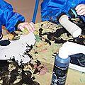 0021 peinture chauve souris