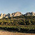 Dégustation de <b>Rhône</b> <b>Sud</b> : Compte-Rendu
