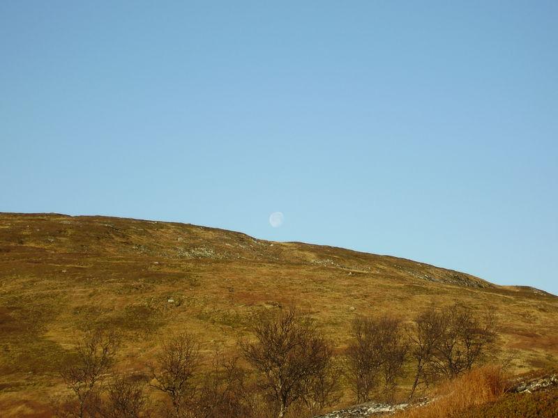 17-10-08 Sortie Montagne et rennes (018)