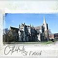 <b>Cathédrale</b> <b>Saint</b>-<b>Patrick</b> Dublin Irlande
