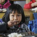 Des chercheurs chinois et américains ont utilisé des enfants chinois pour tester un nouveau riz ogm