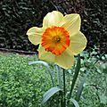 Printemps - printemps - printemps.