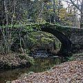 Randonnée du mardi 06 décembre après-midi - Droiturier le <b>pont</b> <b>romain</b>