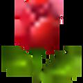 Windows-Live-Writer/d945d9754b41_1125/wlEmoticon-redrose_2