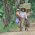 Birmanie N#10, Lac <b>Inlé</b>
