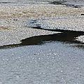 Marée basse dans le golfe du morbihan