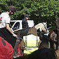balade à cheval médiévale - Abbaye de Hambye (44)