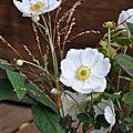 Encore quelques fleurs avant l'hiver