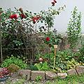 Voici deux massifs de notre jardin. le premier