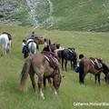 Aout 06 Alpes 22