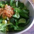 La doucette et son brocoli