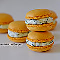 Macaron curry et spicy