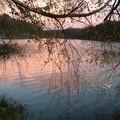 soleil couchant sur l'etang_14