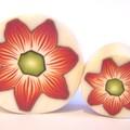 Fleur Ella