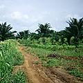 Mali et Sénégal - Formation agricole et rurale (3/19). Les autres missions de l'<b>agriculture</b>.