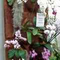 Composition murale sur panneaux de fibres de noix de coco