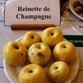 Reinette de Champagne