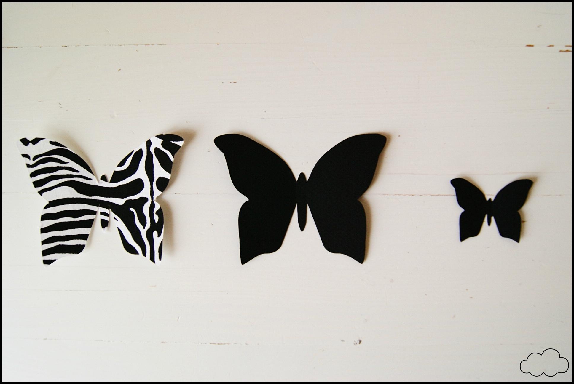 papillons zebre