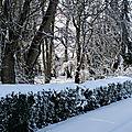 Janvier, mois du blanc!