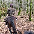 Balade à cheval dans la forêt P1080211