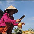 Open-Live-Writer/Vietnam-2-_FB21/2-ananas_thumb