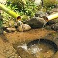 Sanctuaire shinto d'heitate: une source yin et yang
