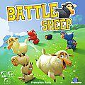 Boutique jeux de société - Pontivy - morbihan - ludis factory - Battle sheep
