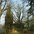 Saint Cyprien Dolmayrac 47110