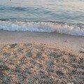 Dans les environs de Split - hotel - plage