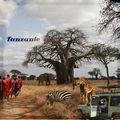 Album Africain