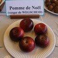 Pomme de Noël (verger de Wegscheid)
