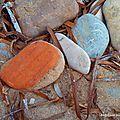 Le galet brique des Fosses (Cap Ferrat, octobre 2011)