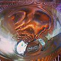 Reflet d'osier dans verre de blanc