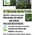 A l'ECOUTE DE LA FORET DIMANCHE 25 JUILLET