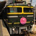 Twilight Express EF 81 103, Ôsaka terminal station