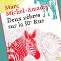 Deux zèbres sur la 30e Rue de Marc Michel-Amadry