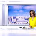 sophiegastrin05.2016_03_28_7h30telematinFRANCE2