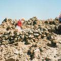 volcan teide_coulée de lave près du pic_064