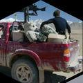 Task Force America
