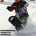 ASSOCIATION LIGERIENNE DE SNOWSCOOT
