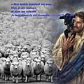 <b>Évangile</b> et Homélie du Dim 12 MAI 2019. Mes brebis écoutent ma voix, elles me suivent, Je leur donne la vie éternelle