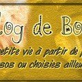 Bannière pour le blog de Bounty