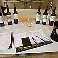 Bordeaux Primeurs 2019 : castillon-Côtes de Bordeaux :Château La Brande, Saint Emilion : Château Mangot, Todeschini Distique 12